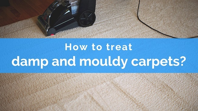 How to treat damp and mouldy carpets