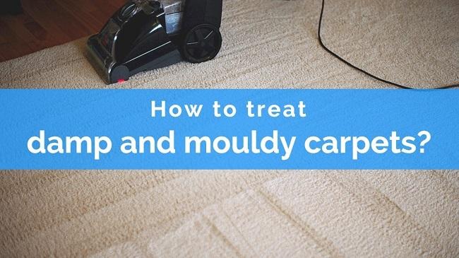 treat mouldy carpets